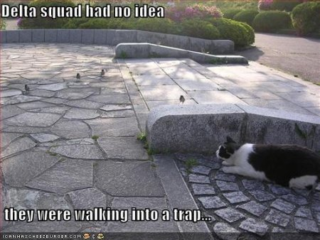 Cat ambushes some birds. Slogan: Delta Squad had no idea they were walking into a trap