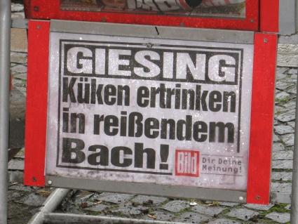 Bild Zeitung titelt: 'Küken ertrinken in reißendem Bach'